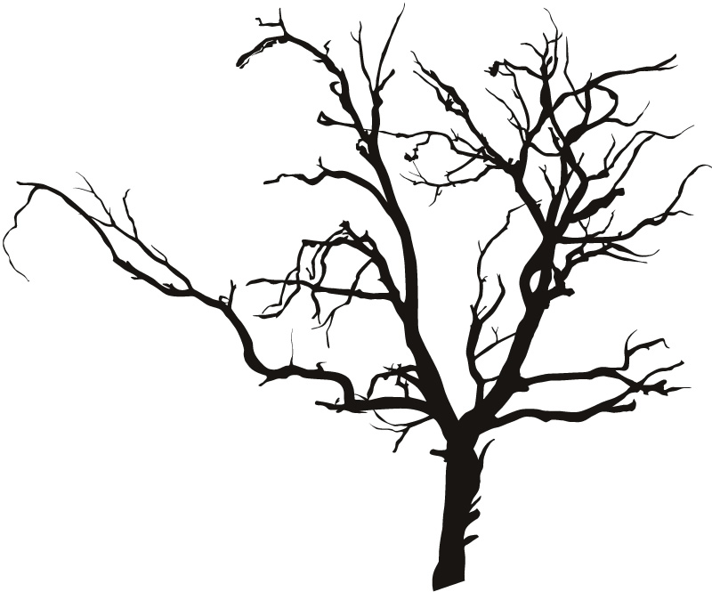 creepy tree clipart outline