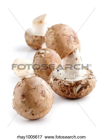 Picture of Brown cremini or young potrobello mushrooms isolated on.