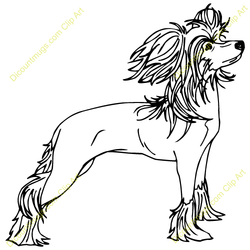 Chinese crested dog clipart.