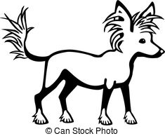 Chinese crested Illustrations and Clipart. 357 Chinese crested.
