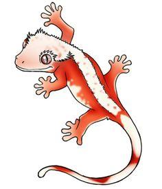 Gecko Drawing at GetDrawings.com.