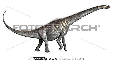 Stock Illustration of Sauroposeidon dinosaur from the Cretaceous.