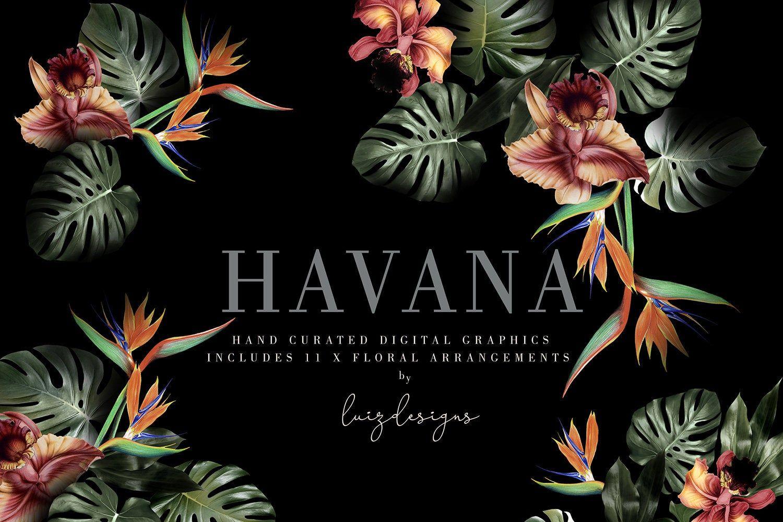 Havana Flower bouquets Clipart PNG Vintage Boho Retro Floral.