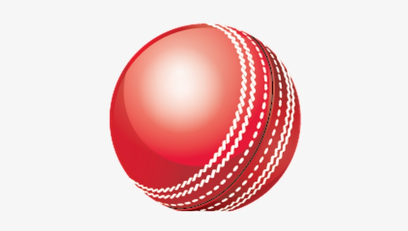 Kookaburra Cricket Ball.