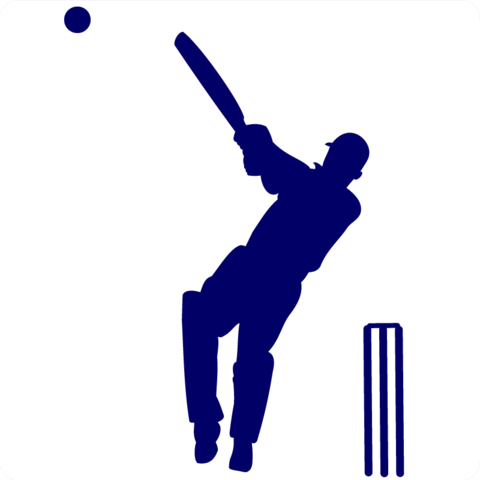 Image result for cricket clipart wis diglit malay rungta.
