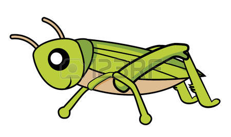 Cricket Clipart Insect.