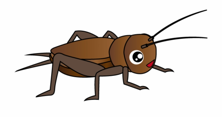 Cricket Insect Clipart Png.
