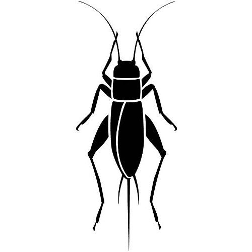 Black Cricket Insect Clipart.