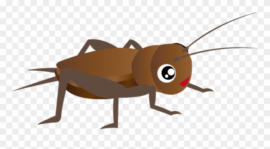 Free Cricket Insect Clipart Images Transparent Png.