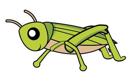 Cricket Clipart Bug.