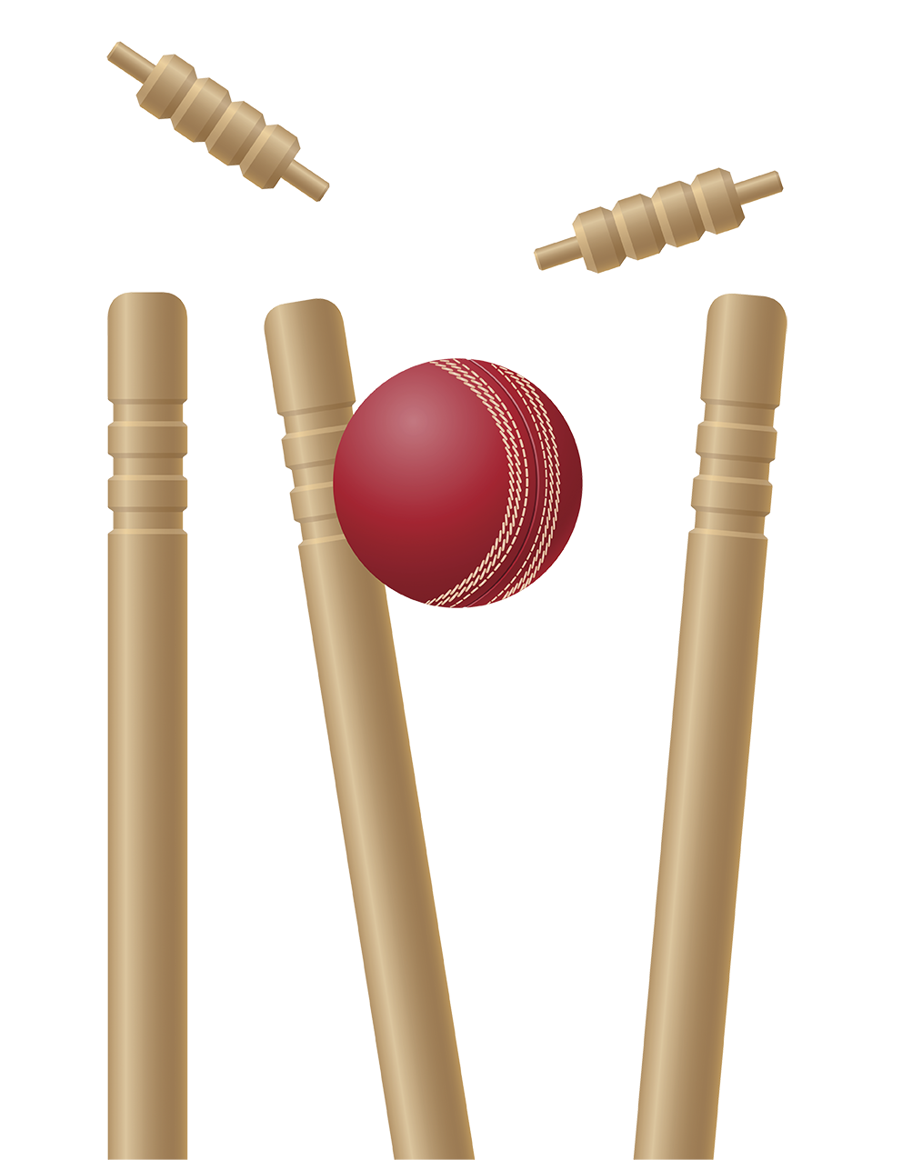 Cricket PNG Transparent Images, Pictures, Photos.