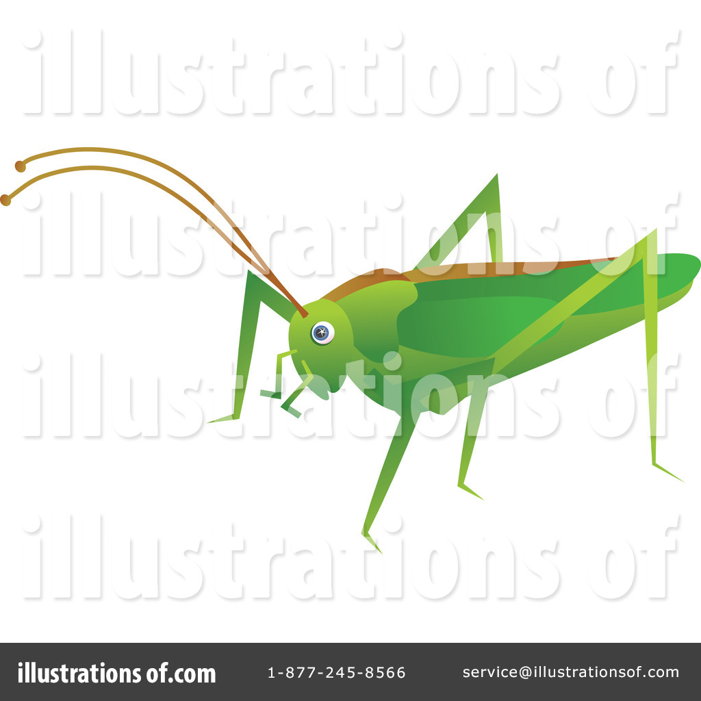 Cricket Clipart #41505.