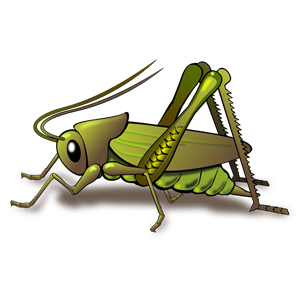 Cricket clipart, cliparts of Cricket free download (wmf, eps, emf.