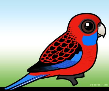 Meet the Cute Crimson Rosella Parrot by Birdorable.