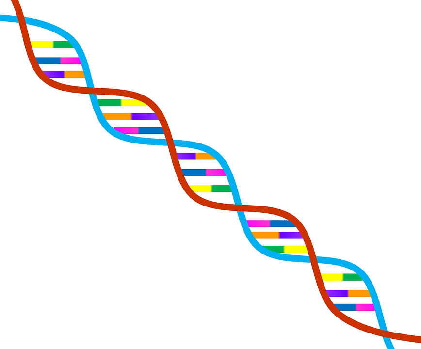 Gene Editing Moves Closer To The Clinic As The Safest CRISPR.