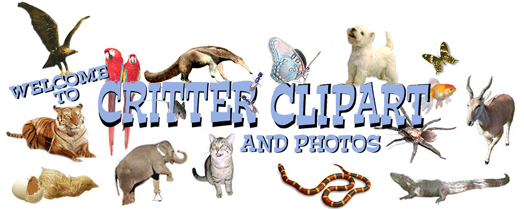 Welcome to Critter Clipart, Graphics and Photos to spruce up your.