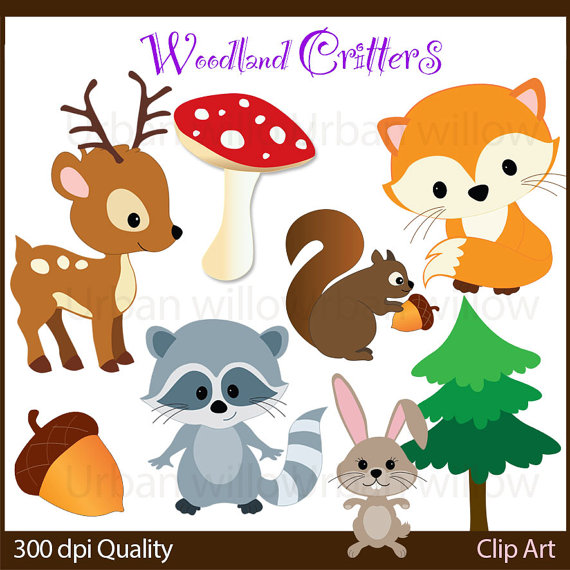 WOODLAND animals, Cute Fox, Cute squirrel clip art, Raccoon.