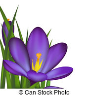 Crocus Clipart and Stock Illustrations. 1,466 Crocus vector EPS.