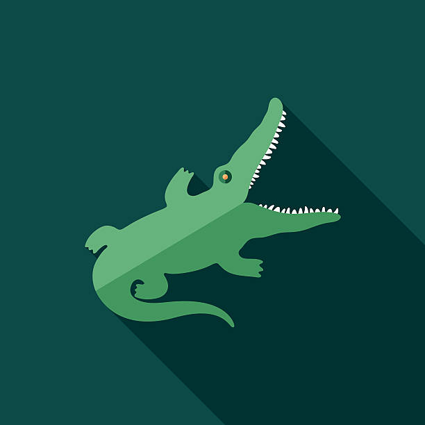 Crocodile Eyes Clip Art, Vector Images & Illustrations.