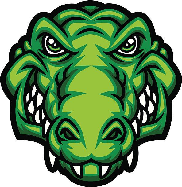 Best Crocodile Head Illustrations, Royalty.