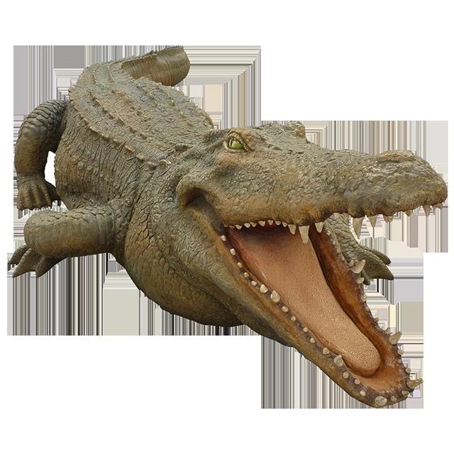 Crocodiles Nile crocodile Alligator Animal.