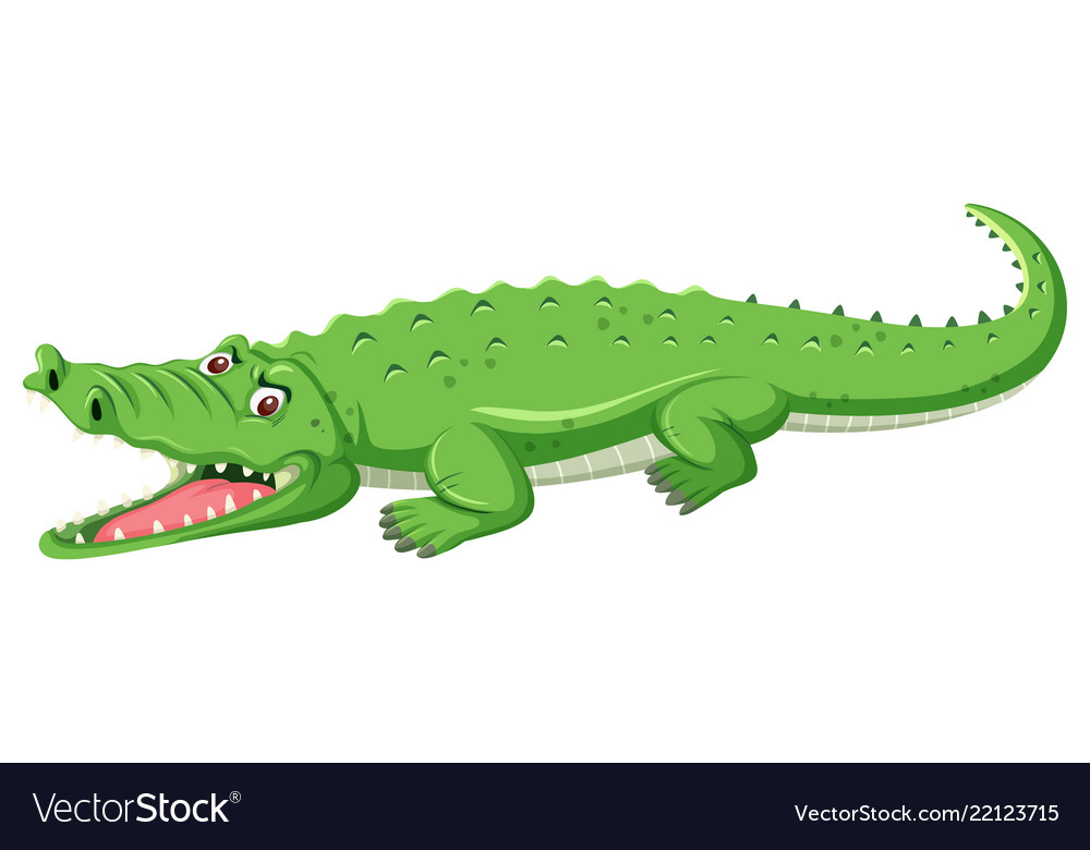 A green crocodile open mouth.