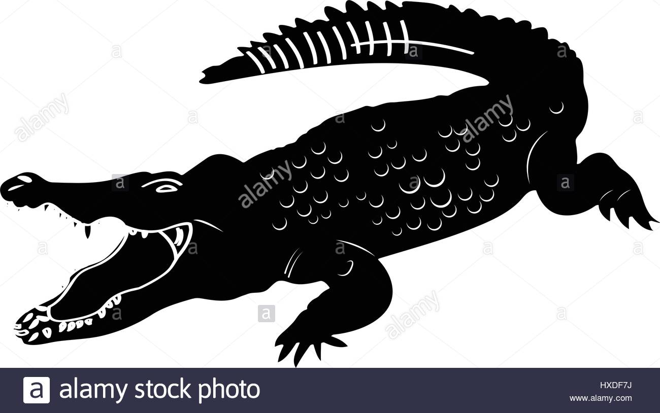Isolated crocodile silhouette Stock Vector Art & Illustration.