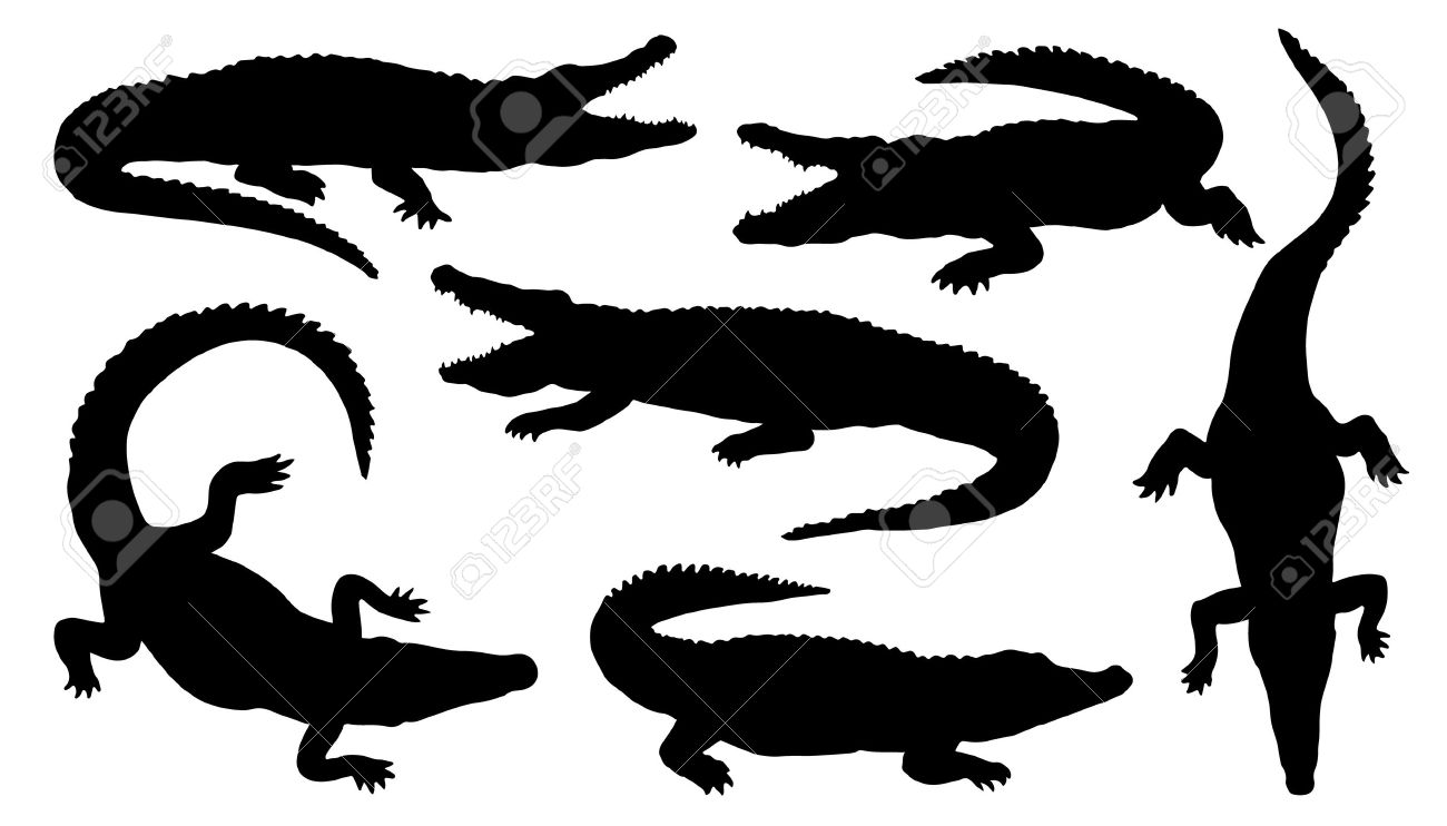 crocodile silhouettes on the white background.