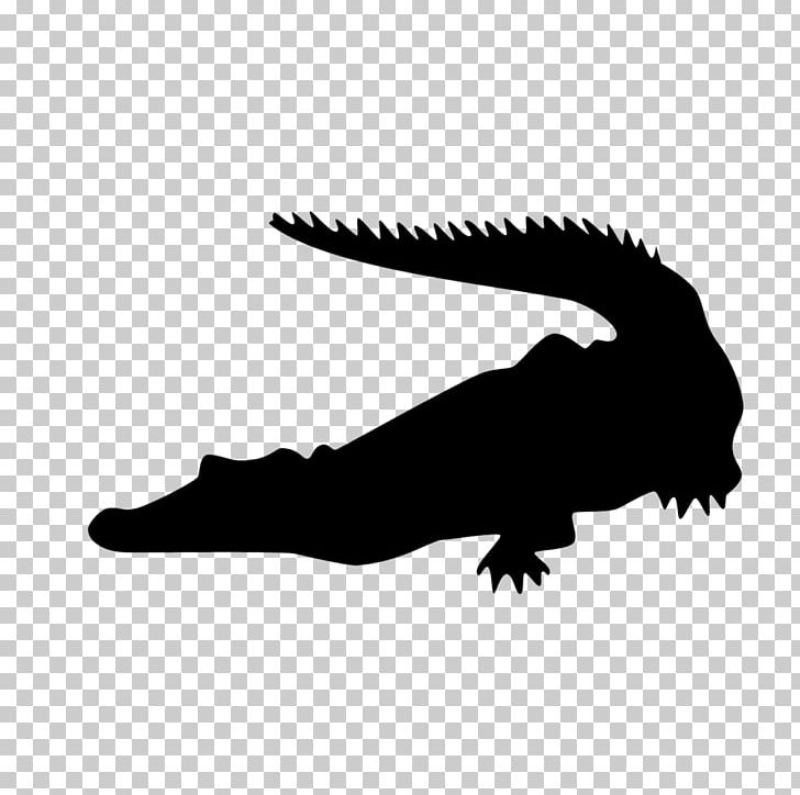 Crocodiles Alligators Silhouette PNG, Clipart, Alligators, Animals.