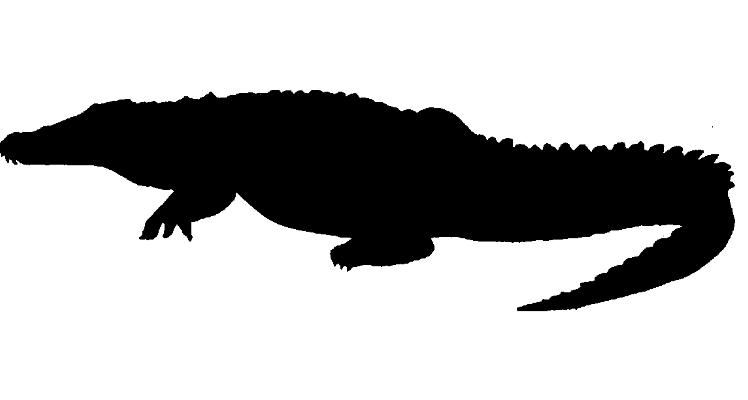 Crocodile Alligator Silhouette Tyrannosaurus Clip art.