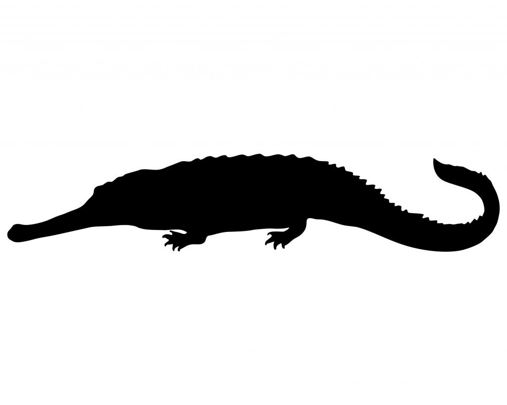 Peter Pan Crocodile Silhouette.