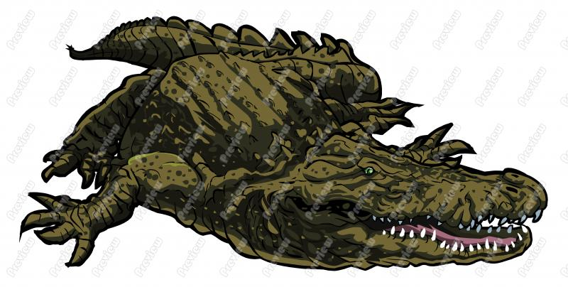 Crocodilian Clipart 20 Free Cliparts Download Images On