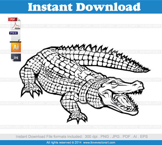 Alligator Clipart, Commercial Free Use, vector graphics.