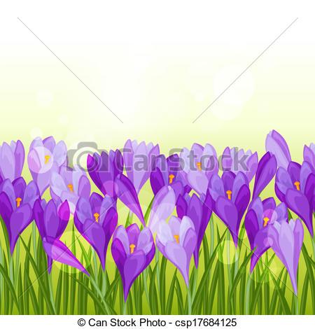 Vector Illustration of Spring flowers crocus seamless pattern.
