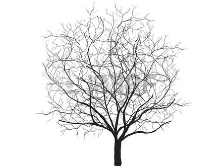 Crooked tree clipart.