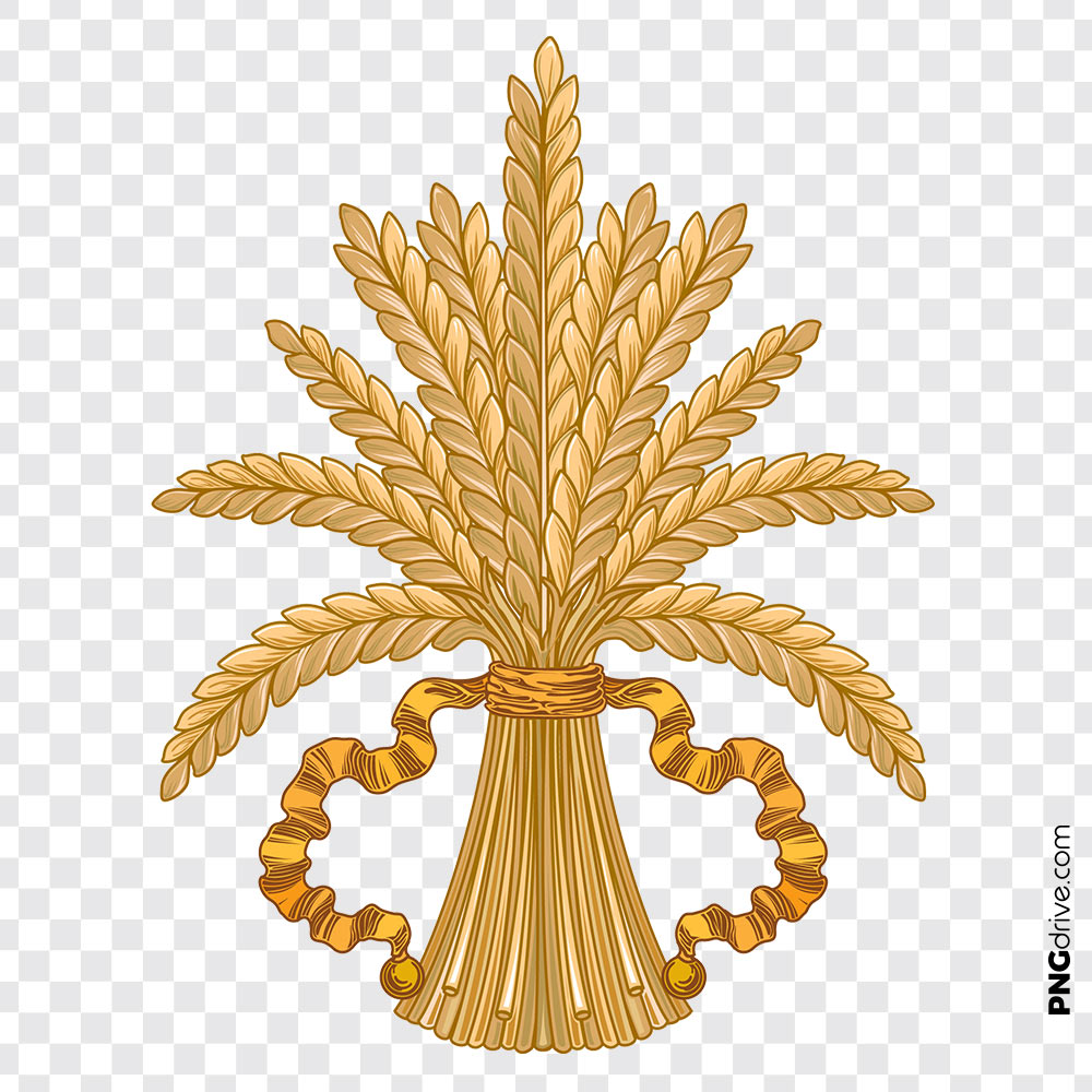 Clipart Wheat Crop Grain Vector PNG Image.