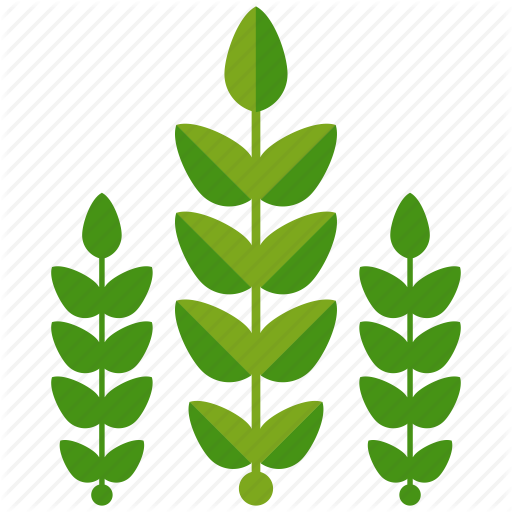 Download for free 10 PNG Crops clipart transparent background Images.