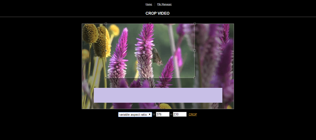 Top 5 Best Online Video Croppers: How to Crop a Video Online.