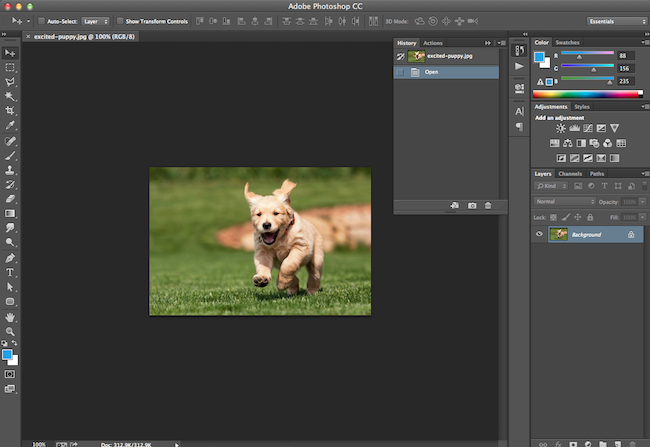 How to Crop Images in Photoshop to Specific Sizes [Quick Tip].