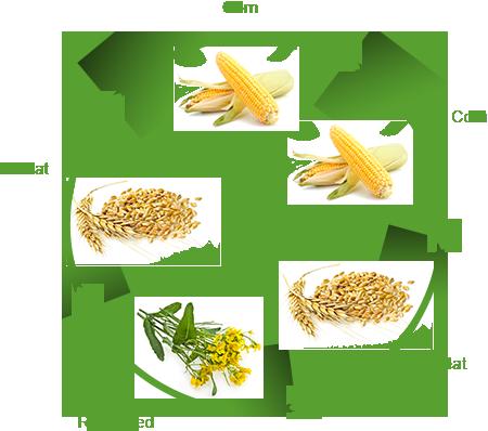 Crop production.