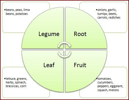1000+ ideas about Crop Rotation on Pinterest.