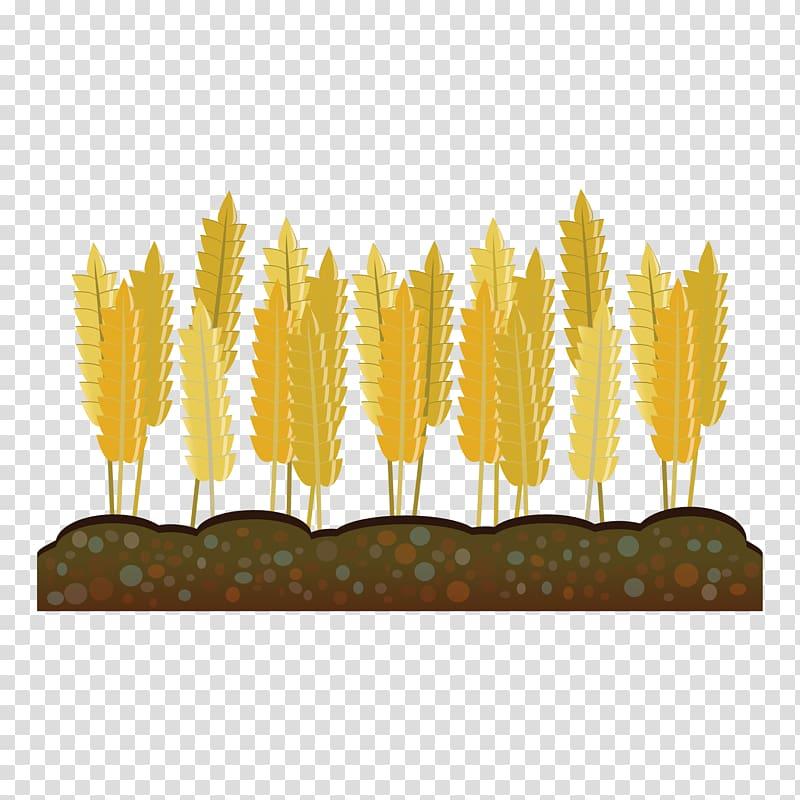 Crop Farm Agriculture Harvest , wheat transparent background.