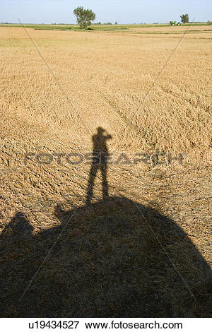 Picture of Shadow of figure standing on farm equipment overlooking.
