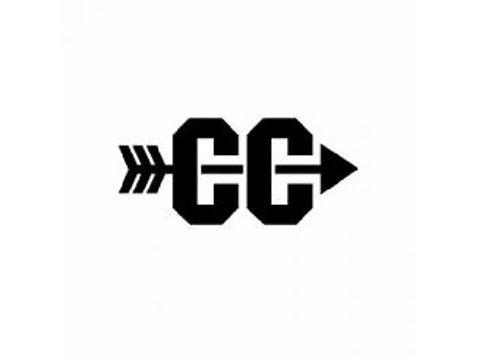 Cross country logo arrow.