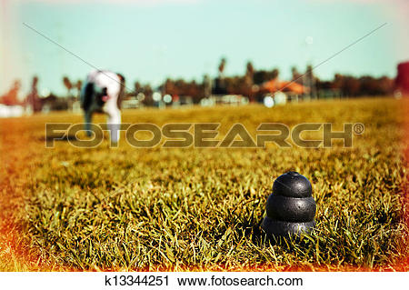 Stock Photography of Running to Dog Toy on Park Grass.
