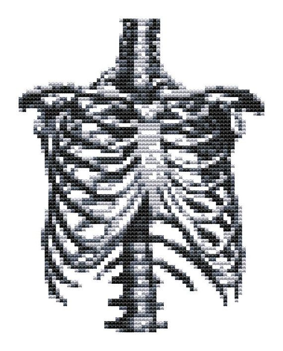 1000+ ideas about Rib Cage on Pinterest.