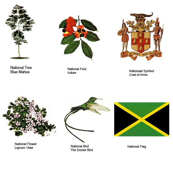1000+ images about Jamaican Tribal Tatoo on Pinterest.