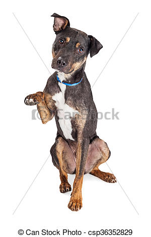 Dog with paws up clipart.
