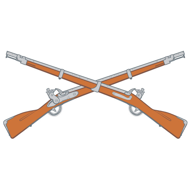 Rifles vector image.