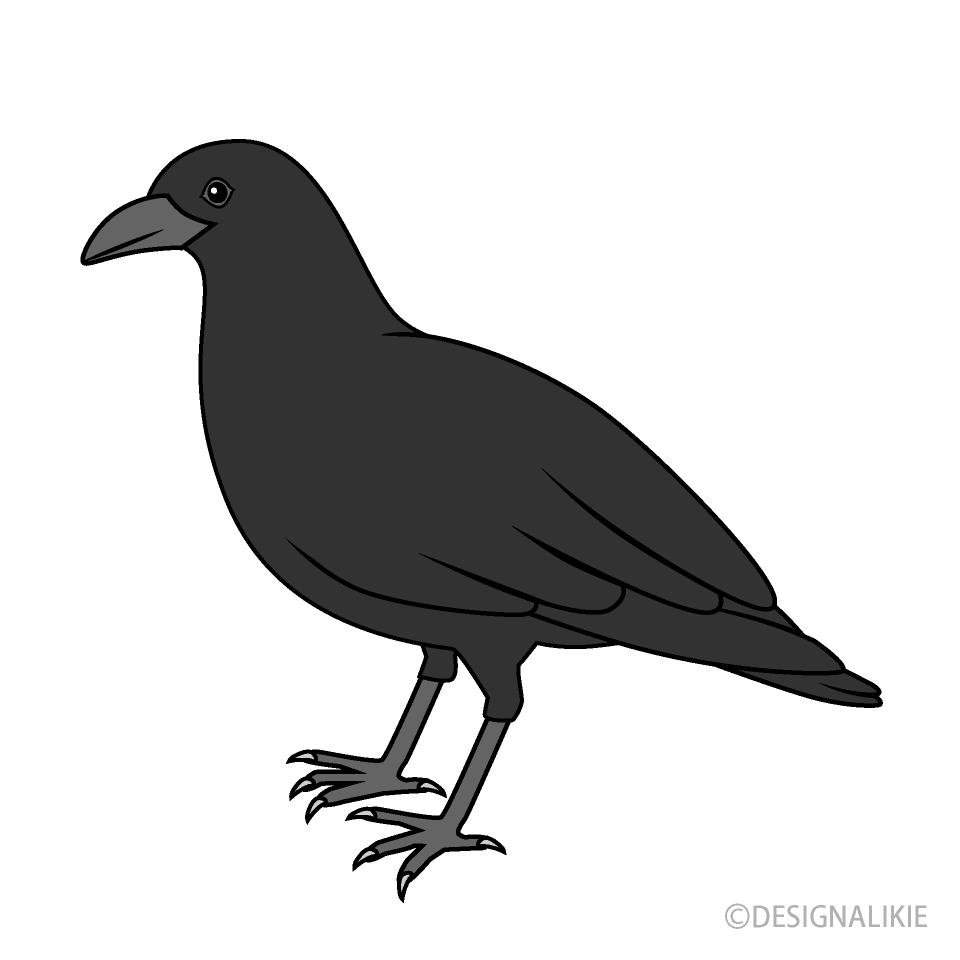 Free Crow Clipart Image|Illustoon.
